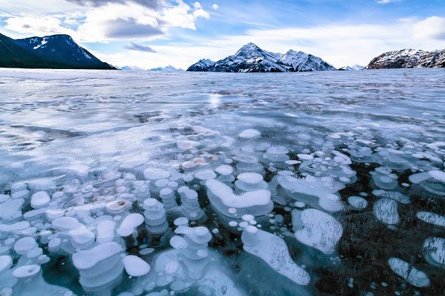 Frozen Air Bubbles in Abraham Lake