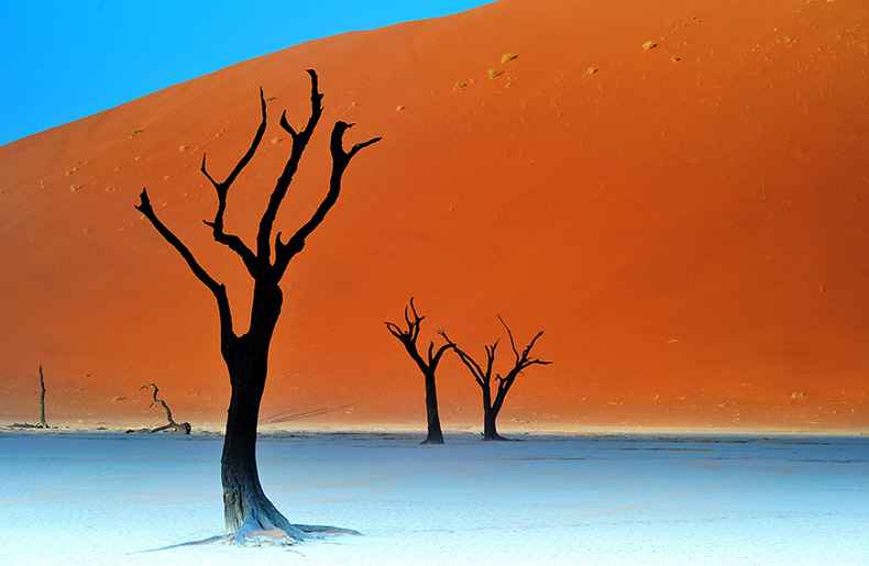 Deadvlei-MAR_3241_790