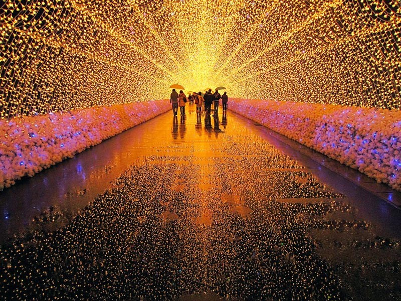 nabano-no-sato-tunnel-of-light-japan
