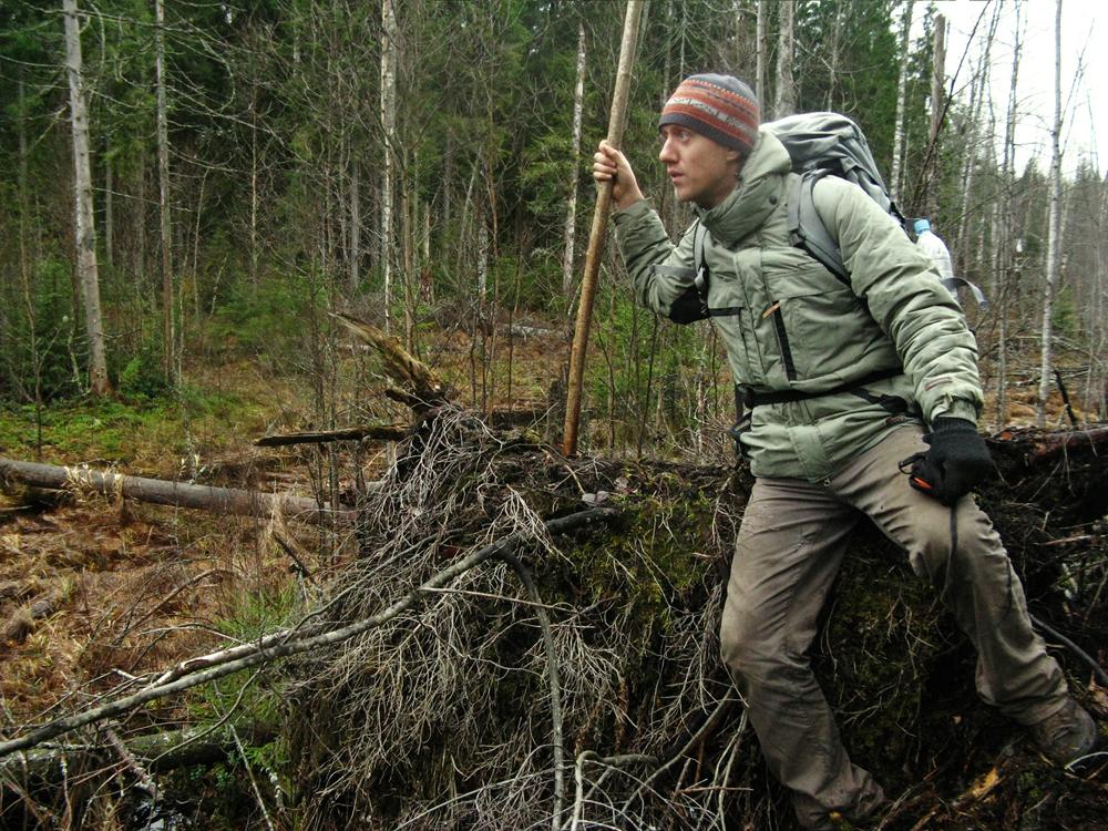 რჩევები თუ როგორ მოიქცეთ  ტყეში დაკარგვისას